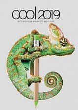 gadżety_reklamowe_Grupa_DS_COOL_2019_okladka